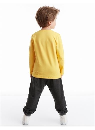 Denokids Roar Lion Erkek Çocuk Pantolon Takım Renkli